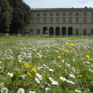 Città di Castello, Palazzo Vitelli a Sant' Egidio